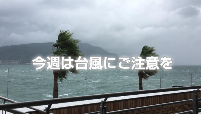 今週は台風にご注意を。
