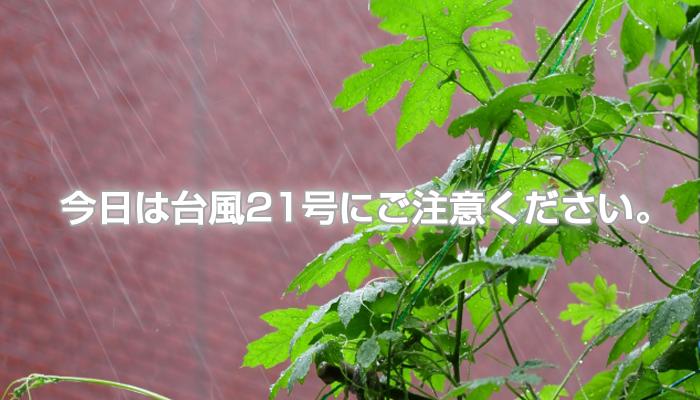 今日は台風21号にご注意ください。